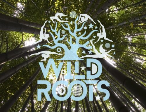 Wild Roots Festival
